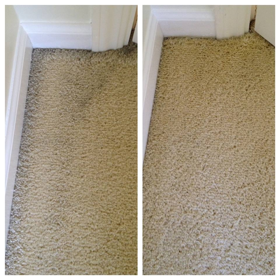 Before And After Pinnacle Eco Clean