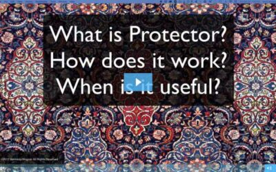 What Is Protector?